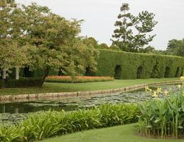 fiume in giardino foto
