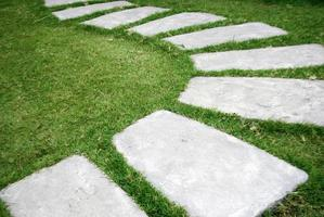 passerella in pietra in erba