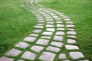 sentiero di pietra in erba