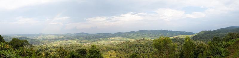 montagna e foresta foto