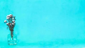 fiori in un vaso su sfondo blu foto