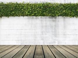 muro bianco con una siepe foto