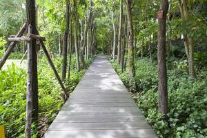 ponte di legno in un parco in thailandia foto