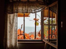 vista idilliaca attraverso una finestra di una cabina in autunno foto