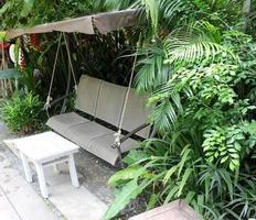 oscillare in un giardino sul retro foto
