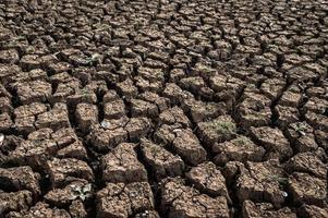 terra arida con terreno asciutto e screpolato