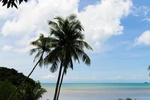 spiaggia estiva in thailandia foto