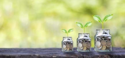 sfondo di affari finanziari. piantare un albero su una bottiglia di monete e pavimento in legno. idee per la crescita finanziaria e degli investimenti foto