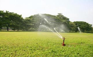 irrigatore in erba foto