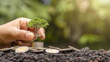 gli alberi che crescono sulla pila di denaro includono le mani degli investitori, i concetti di investimento finanziario e la crescita degli investimenti foto