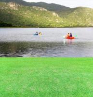 erba verde brillante vicino al lago foto