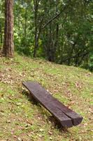 panca in legno nella foresta foto