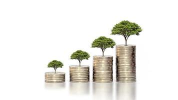 crescita delle piante a foglia verde sulle monete su uno sfondo bianco, idea di avvio aziendale e costruzione aziendale per il successo foto