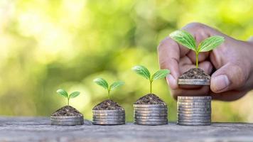 un albero che cresce su un mucchio di soldi e nelle mani di investitori, idee di investimenti finanziari e start-up aziendali foto