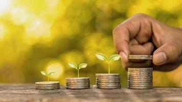 concetto di crescita degli investimenti aziendali, mucchio di monete con piccoli alberi che crescono sulla moneta foto