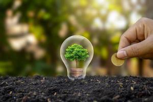 gli alberi crescono su mucchi di denaro nelle lampadine. risparmio energetico e idee ambientali nel giorno della terra foto