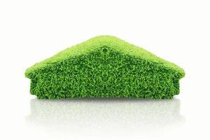 topiaria verde cespuglio sotto forma di casa su sfondo bianco
