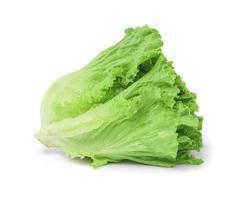 foglie di lattuga su sfondo bianco foto