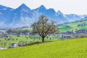vista della città di stans in svizzera