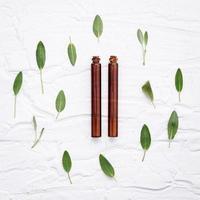 foglie di salvia fresca con oli aromatici foto