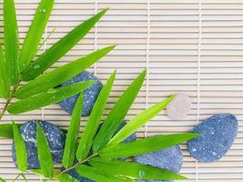 bambù e pietre foto
