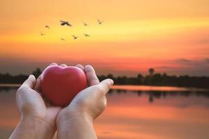 mani che tengono un cuore rosso foto