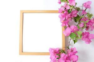 cornice vuota con pianta su sfondo bianco foto