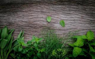 erbe su legno al buio foto