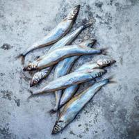 pesce shishamo fresco foto