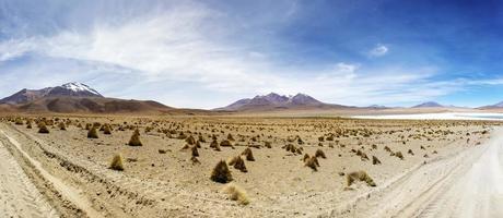 deserto di dali in bolivia
