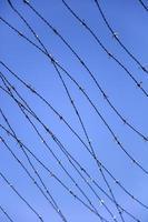 filo spinato sotto il cielo blu foto