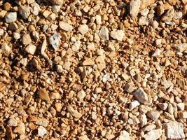 patch di terreno asciutto per lo sfondo o la trama foto
