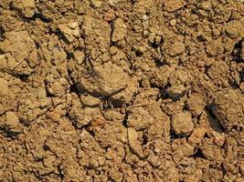patch di terreno secco e screpolato per lo sfondo o la trama foto