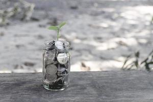pianta crescente monete in una bottiglia di vetro sul tavolo di legno foto