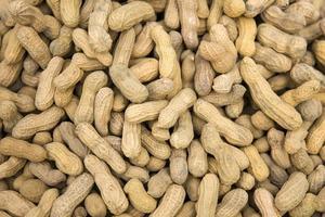 gusci di arachidi sul mercato foto