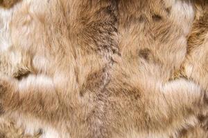 lana di baby alpaca foto