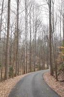 strada nel paesaggio invernale foto
