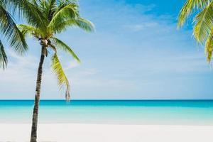 spiaggia tropicale e sfondo blu cielo