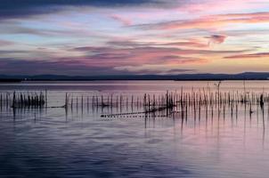 estuario dell'albufera a valencia, spagna foto