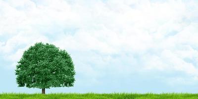3d illustrazione di erba e alberi con vista di cieli nuvolosi foto