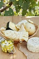 diversi tipi di formaggi su uno sfondo di legno sullo sfondo del fogliame verde foto