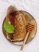 nido d'ape su un piatto di ceramica foto