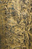 vecchia struttura in metallo pelato foto