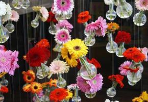 fiori di gerbera penzolanti su un filo foto