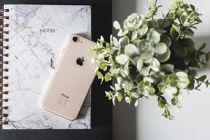 2019-- editoriale illustrativo dell'iPhone 8 oro su notebook accanto alla pianta verde