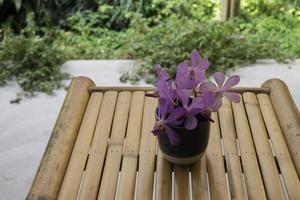 disposizione dei fiori viola foto