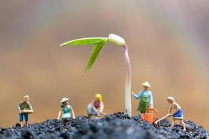 giardinieri in miniatura che si prendono cura dei germogli in crescita in un campo, concetto di ambiente foto