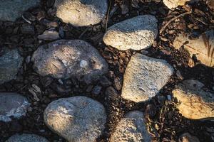 sentiero di terra in ciottoli con massi e corteccia di sughero foto