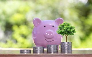 alberi che crescono su pile di monete e salvadanaio per risparmiare denaro foto