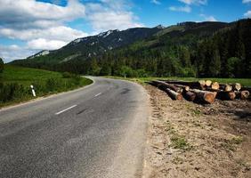 strada attraverso un bellissimo paesaggio di montagna foto